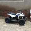 49cc/50cc kids mini petrol quad bikes