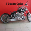 Fully Customized Softail Standard!
