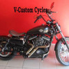 One of a Kind Customized 2013 Sportster XL1200